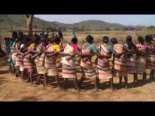 Embedded thumbnail for INDIA - Gadaba Tribal Dancing in Orissa